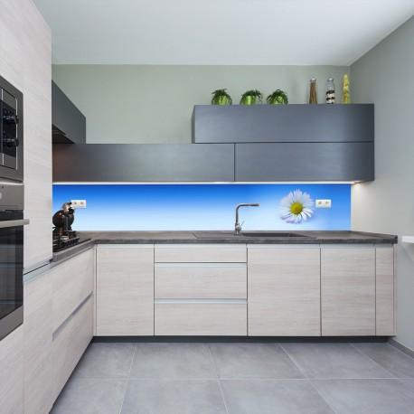 Panel szklany do kuchni stokrotka na niebieskim tle