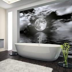 Panel szklany do łazienki  pełnia księżyca