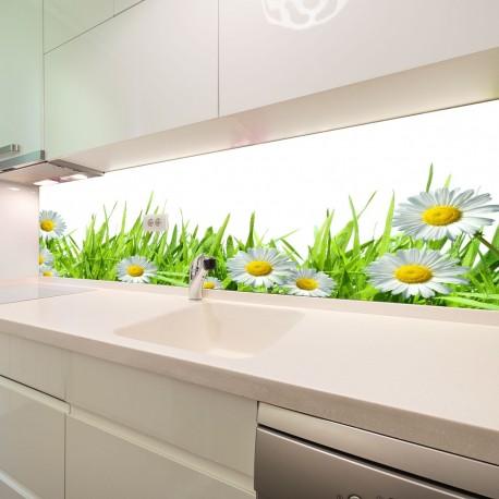 Panel szklany do kuchni stokrotki