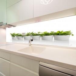 Panel szklany do kuchni zioła w doniczkach