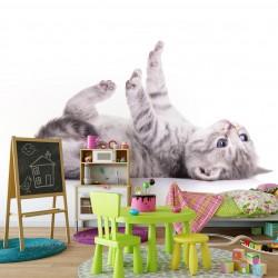 Fototapeta do pokoju dziecka leżący kot