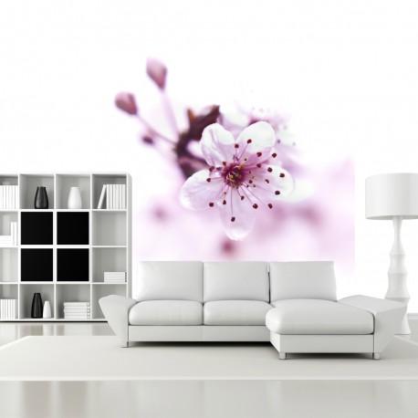 Fototapeta do salonu różowy kwiat
