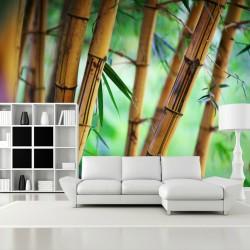 Fototapeta do salonu bambus