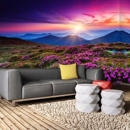 Fototapeta do salonu kwiaty w górach